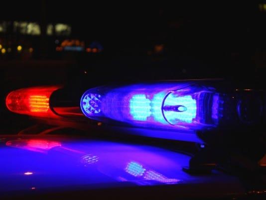 police light Alex_Schmidt istock