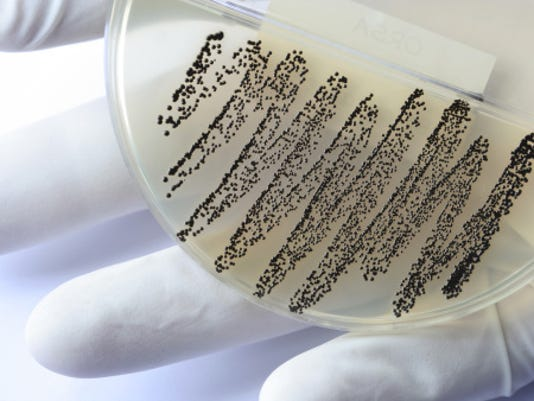 The report focuses on several types of bacteria responsible for common, serious diseases such as bloodstream infections, diarrhea, pneumonia, urinary tract infections and gonorrhea. Thanks in part to antibiotic overuse and the dearth of new drugs, some bugs that were once easily curable now resist even the latest, most powerful antibiotics, the report says.