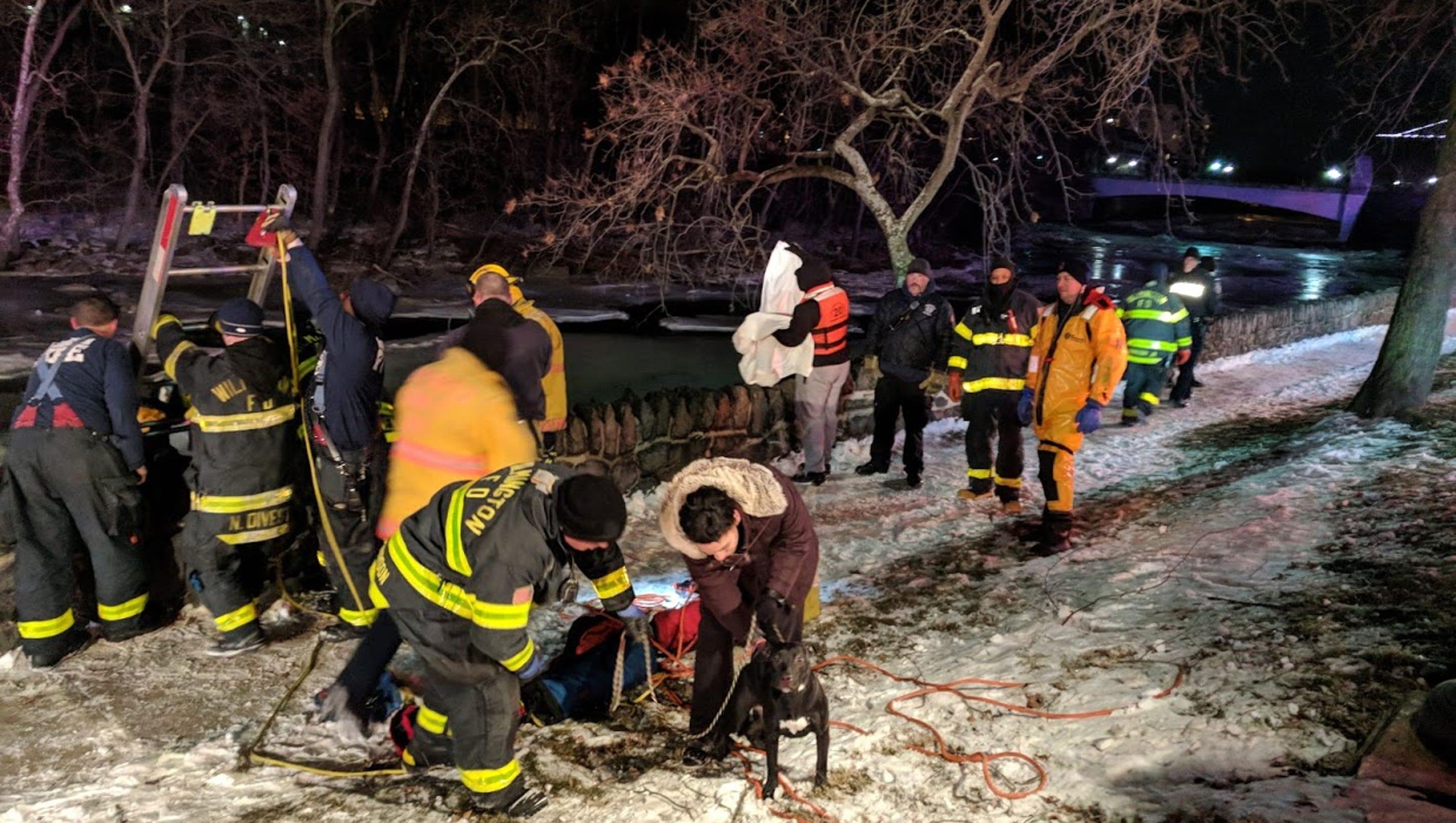 Delaware Dog Rescue