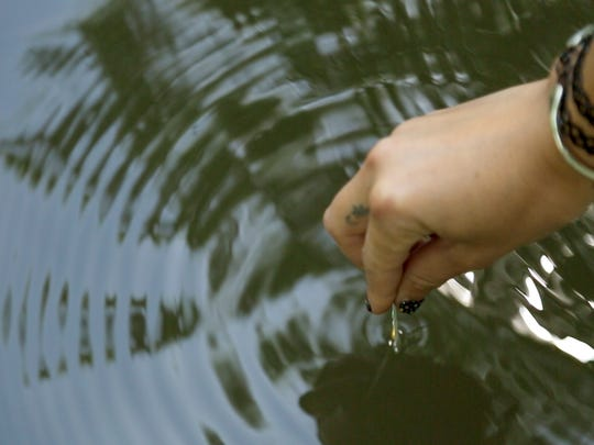 A student takes a water sample from the Apalachicola River.