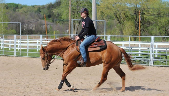 Two-year-old horses that have been trained by UW-River Falls students enrolled in the Principles of Training Horses class at the 41st annual Colt Sale.