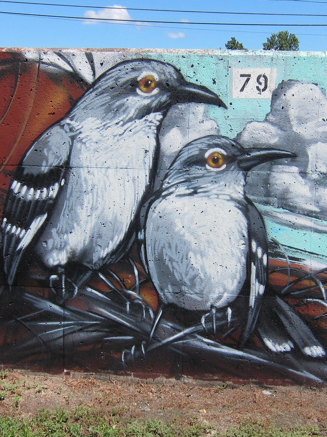 Paint Memphis Helps Connect Graffiti Artists With Walls