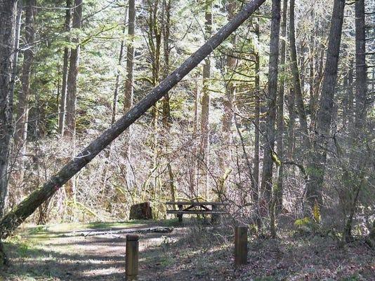 SAL0419-Herman Creek