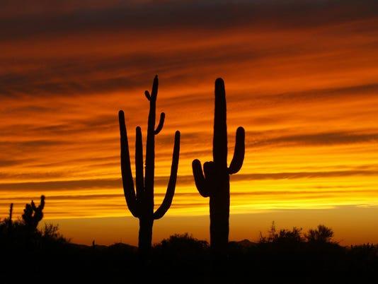 Arizona_030815