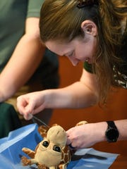 Mesker Park Zoo docent Jenni Kimbel use a needle and