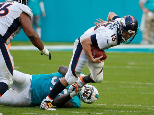 Image result for siemian sacked dolphins