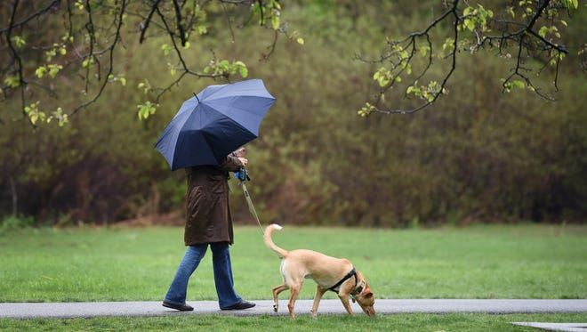 A woman holding an umbrella against the rain takes a walk with her dog at Saddle River County Park in Glen Rock April 25, 2017.