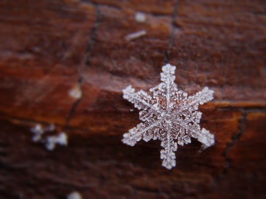 Closeup of a snowflake captured using a Canon T3i with