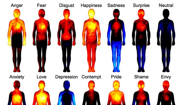 Researchers in Finland mapped how emotions triggered sensations in the body.