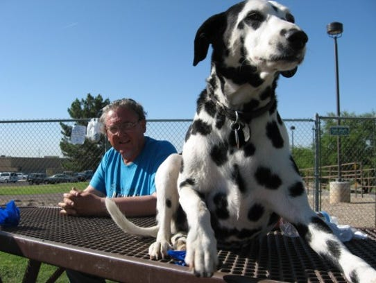 Dog Park North Scottsdale