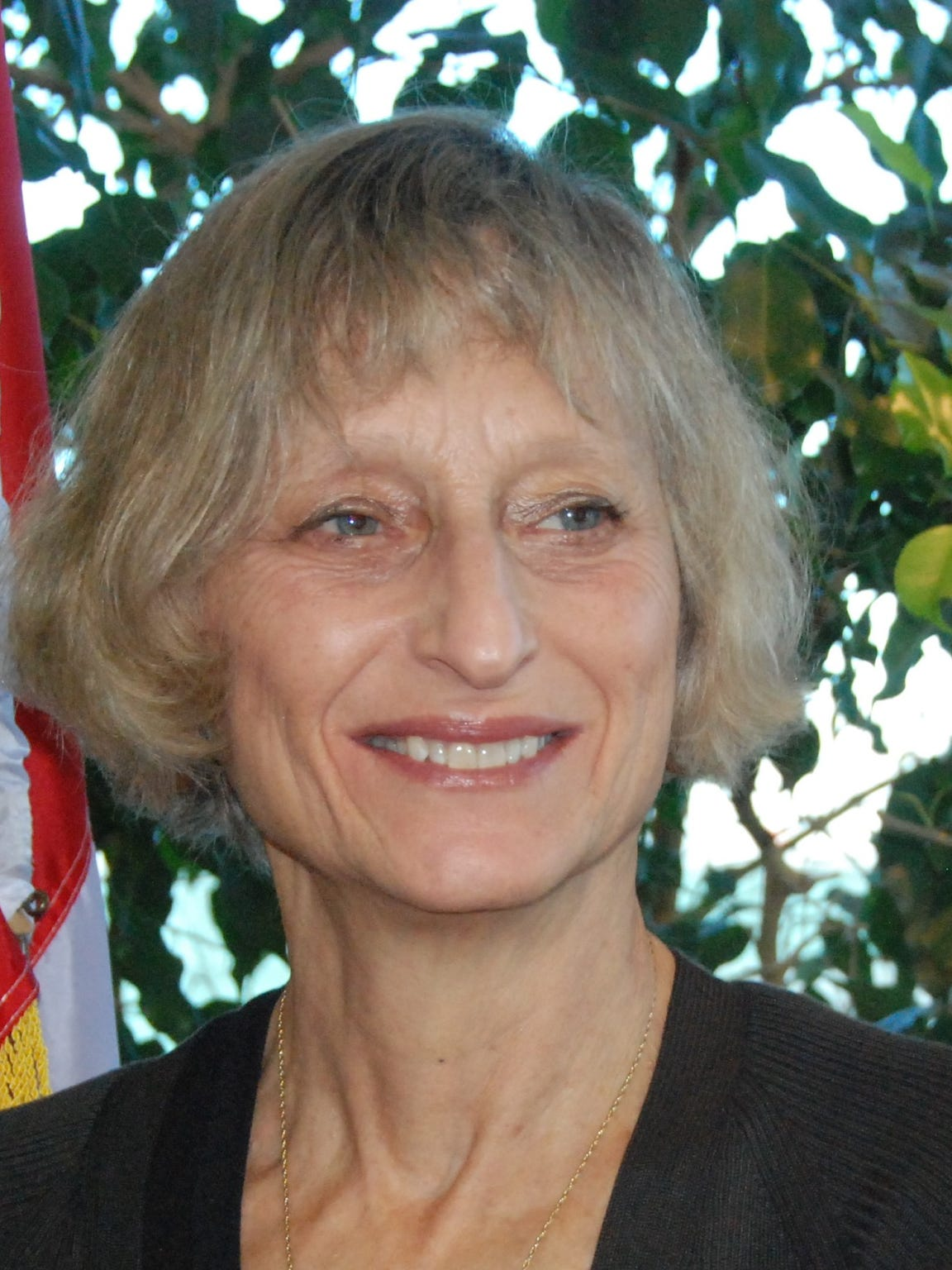 Lana Pollack, U.S. chair of the International Joint