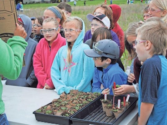 Students learned about native Iowa prairie plants May 24 during the Power Pollinator Day hosted by Monsanto, Williamsburg. Students learned how plants and insects work together in the environment.
