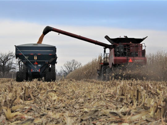 Growers must consider the fertilizer source, application rate, and the timing of application when managing for extra bushels at harvest.