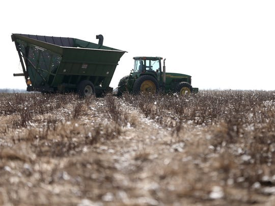 Local farmers help strip the cotton crop of Colin Klattenhoff Thursday, Jan. 5, 2017, near Miles.