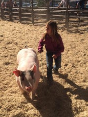 Addy Cremers (age 8) in pee-wee swine showmanship with Jimmy Dean, she placed 3rd.