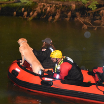 Authorities release identity of fisherman who fell into Eagle Creek