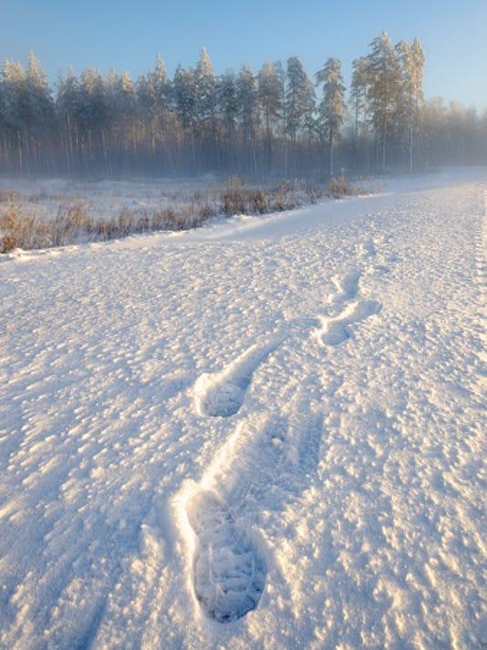 635893867931758131-Snow-prints.jpg