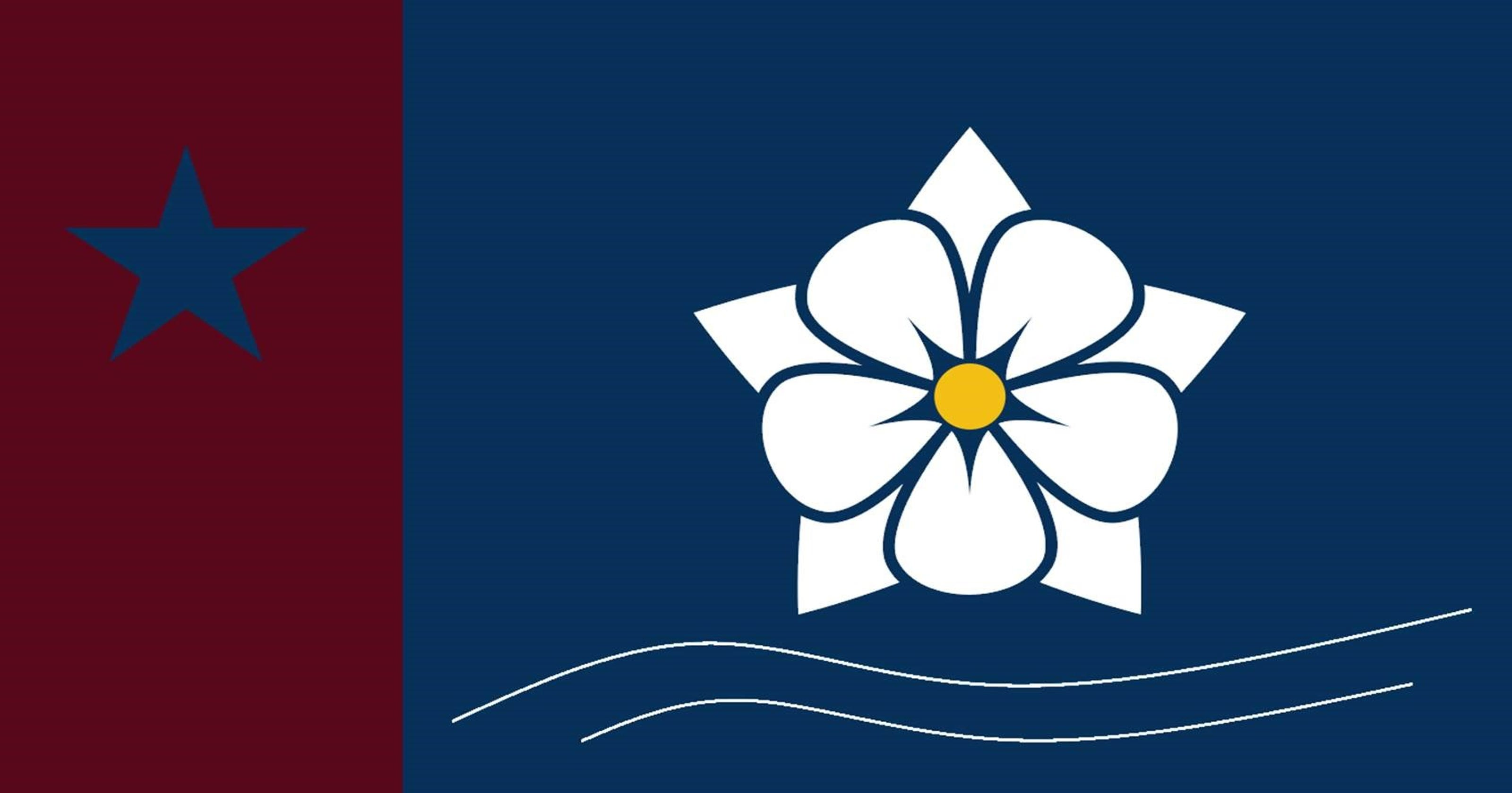 hattiesburg resident comes up with design for city flag