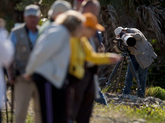 """Onlookers and photographers watch a yellow crowned night heron at J.N. """"Ding"""" Darling Widlife Refuge."""