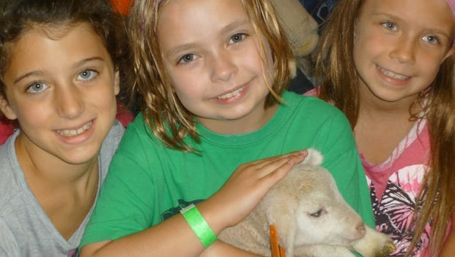 The Wisconsin Sheep & Wool Festival offers activities for children of all ages.