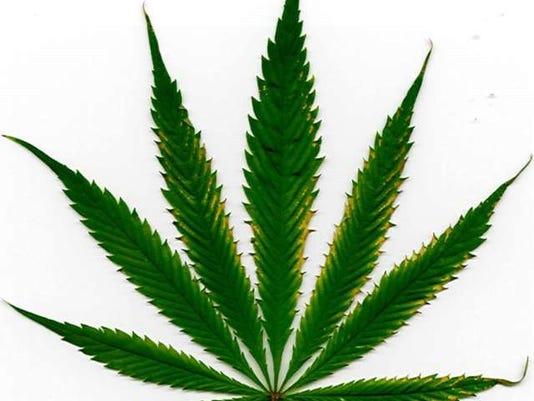 636149046363813801-marijuana-leaf-jpg-x33cvr-clipart.jpg