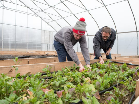 Kip Curtis, assistant professor and Tyler Arter, alum in hat, who is a support assistant for the Microfarm Mansfield Campus Ohio State Alumni Magazine, work with vegetables.