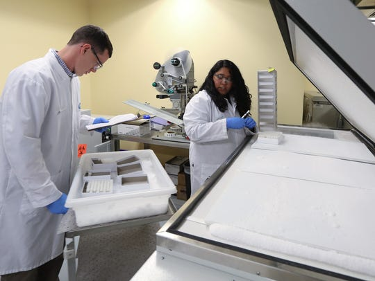 Serum samples are processed at Pfizer Vaccine Clinical