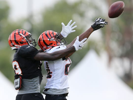 Cincinnati Bengals defensive back C.J. Goodwin (24)