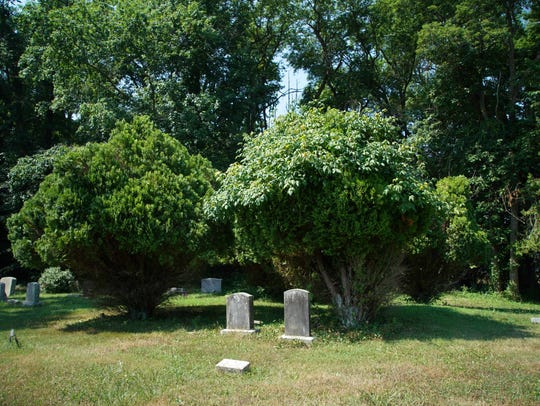 The Fork Branch Cemetery is a resting place for citizens