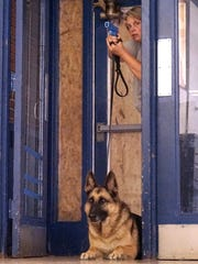 Officer Jennifer Mansfield and Maverick enter the training