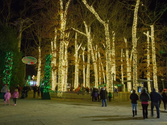 Tall trees, entwined with lights, add to the ambience