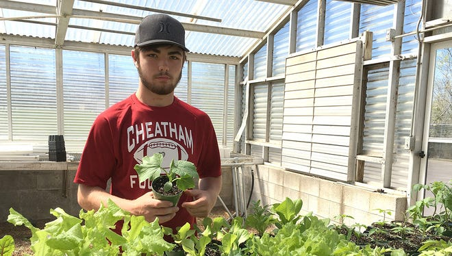 Cheatham County Central High School student Shawn Singleton has been dedicated to working with the school's greenhouse as the manager.