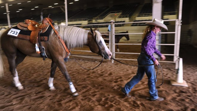 Nellie Doneva/Reporter-News Bailey McDaniel leads Miracle Flash Dance out of the reining competition during the 2016 Texas 4-H Horse Show Friday.
