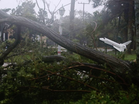 A space shuttle model stands near some downed trees