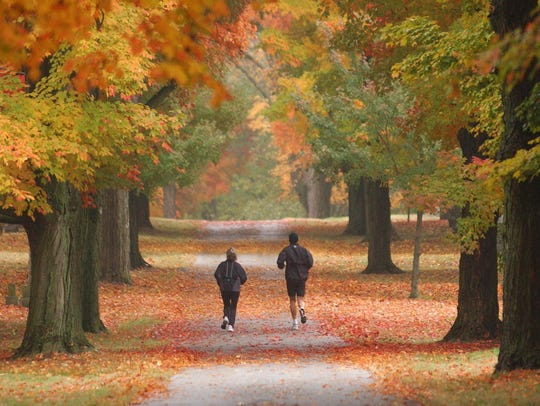Joggers run under a canopy of color in Maple Park Cemetery