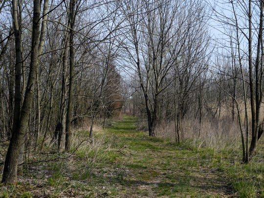 A hiking path is seen along Turtle Trail in the Patoka