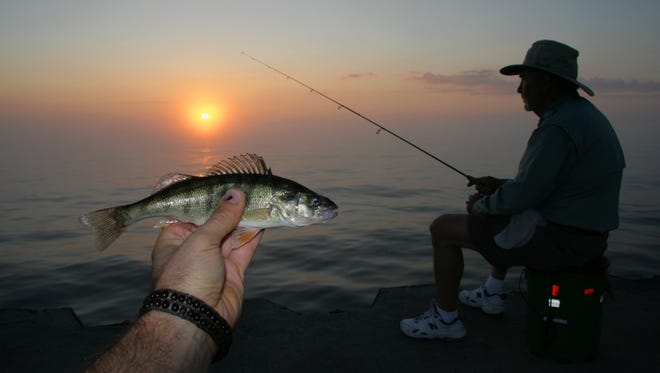 A yellow perch is shown in the foreground as an angler fishes just after sunrise on Government Pier on Milwaukee's Lake Michigan shore.