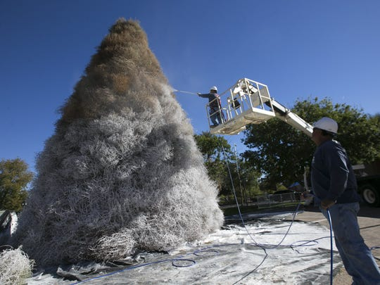Frank Martinez (in cherry picker) of the Chandler parks department spray paints the annual tumbleweed tree white, as Victor Mejia, also of the Chandler parks department holds the sprayer hose, in downtown Chandler on Friday, Nov. 18, 2016.