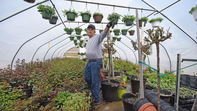 Charlie Horton explains how he keeps the greenhouses warm enough to grow even when the snow is still falling.