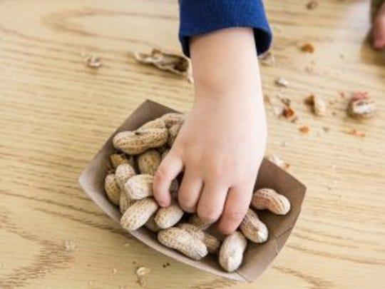 New drug Palforzia could help curb harsh reactions to peanut allergies.