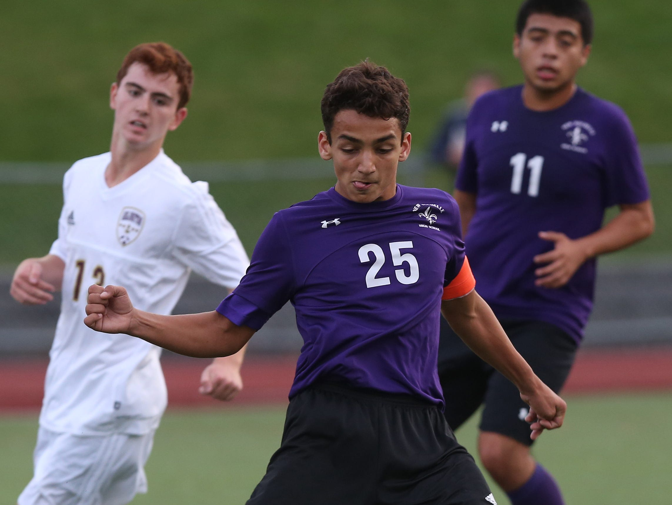 New Rochelle defeated Arlington 3-0 in the boys soccer Section 1 Class AA championship game at Lakeland High School in Shrub Oak High School Oct. 29, 2016.