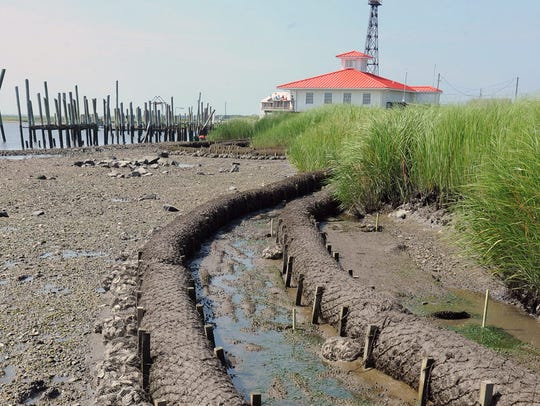 The Partnership for Delaware Estuary finishes a living