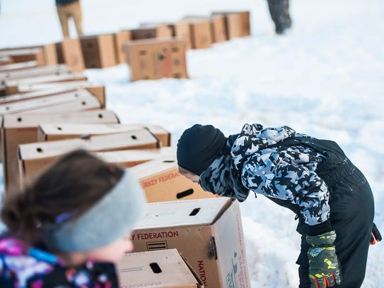 Brayden Hammond, 6, peeks at turkeys through box air
