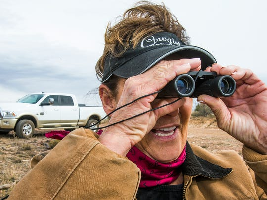 Advocate Mary Hauser searches for horses in a section of Apache-Sitgreaves.
