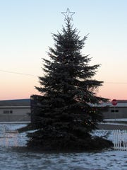 The Gunderman family from East Hill in the Town of Elmira donated this tree for Southport's Christmas Land.