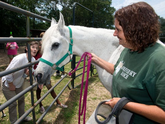 Sky, and Panhandle Equine Rescue President, Diane Lowery, right,  celebrate the horse's 32nd birthday with friends and supporters like Pam Ravelle at a farm in Cantonment Saturday afternoon.