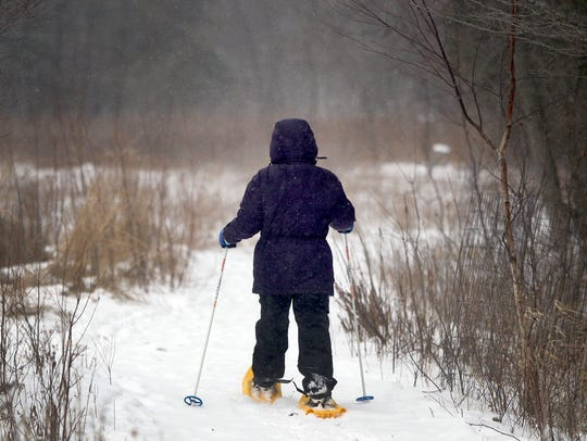Snow flies as a snowshoer moves through the woods at