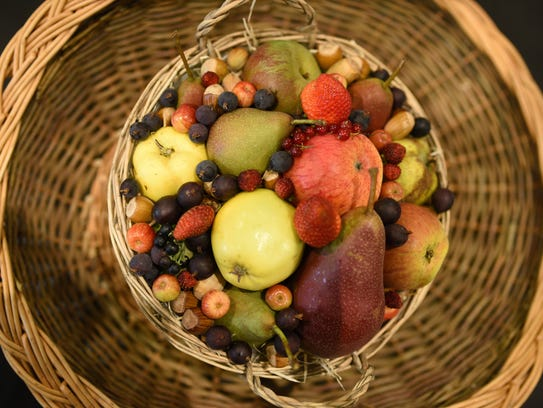 Fruit baskets make lovely gifts, but can harbor unseen dangers if not packed and shipped in a proper, timely manner. Any fruit received by mail should be individually wrapped and cold to the touch when received.
