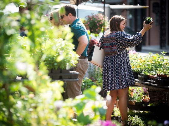 Festival goers browse plants for sale at the Blooming