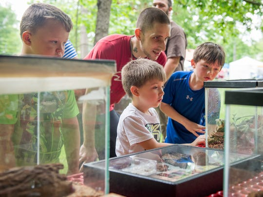 Families look at the various insects with UT's Entomology